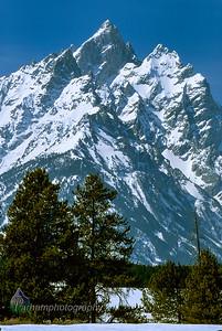 Teton Majesty  (F029)