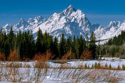 Teton Winter  (F048)