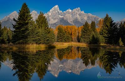 Autumn Reflection - Tetons  (GT-09064)