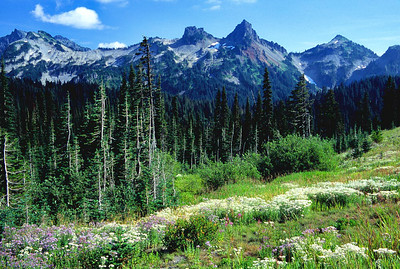 (J061)  Tatoosh Range