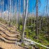 14  G Trail and Hood