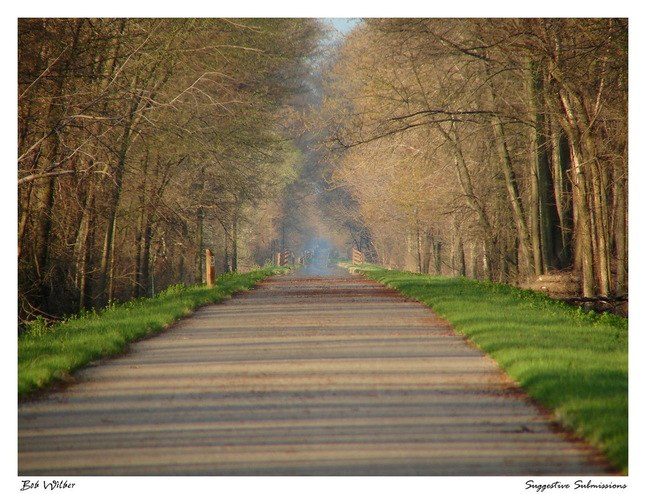 """""""Life's Journey"""""""