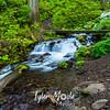 90  G Wahkeena Creek and Trail