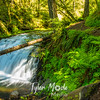342  G Dutchman Falls and Trail