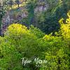 13  G Multnomah Falls and Trees