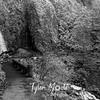 44  G Wahkeena Falls and Trail BW