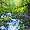 70  G Wahkeena Creek and Trail