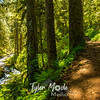 278  G Multnomah Creek Trail