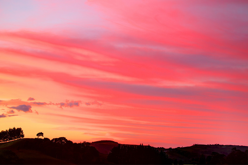 Colourful pink sunset near Cambridge, Waikato, New Zealand