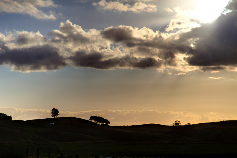 Sunset near Cambridge, Waikato, New Zealand