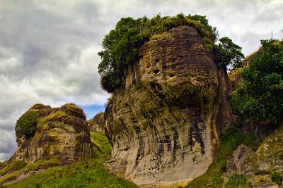 Between Port Waikato and Nikau Caves. New Zealand
