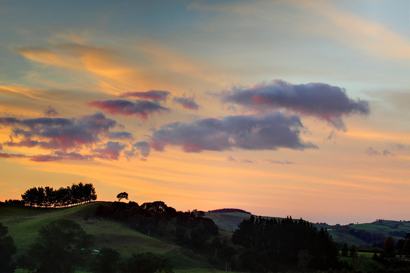 Sunset near Cambridge, Waikato, New Zealand, with trees on the horizon.