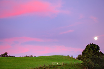 Colourful sunset with perigee full moon rising, March 2011, near Cambridge, Waikato, New Zealand