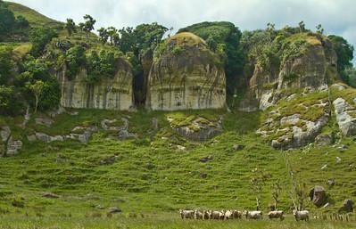 Between Port Waikato and Nikau Caves, New Zealand