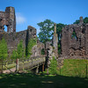 Grosmont Castle, Monmouthshire 30/6/18