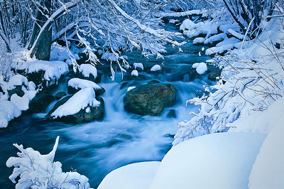 Fresh snow along Big Cottonwood Creek.  Bill's original capture was on film in 2003.