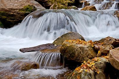 Fallen cottonwood leaves with big and little cascades in Big Cottonwood Creek