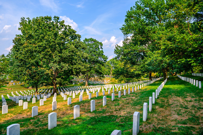 Arlington-Cemetery-Trees-Gravestones-Memorial-Day_trees-oaks-peaceful-tranquil-honor-duty-service-D8X6080