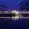 Cherry Blossoms - Jefferson Memorial - IMG_9370