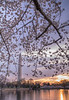 Sunrise over DC