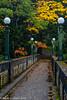 Arboretum Bridge 10-2013