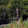 Victoria Viaduct in Washington