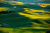 Washington State, Palouse Region, Steptoe Butte State Park, Sunset, 华盛顿州,  田园,  日落