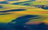 Washington State, Palouse Area,  Steptoe Butte, Sunset,  华盛顿州,  田园,  日落
