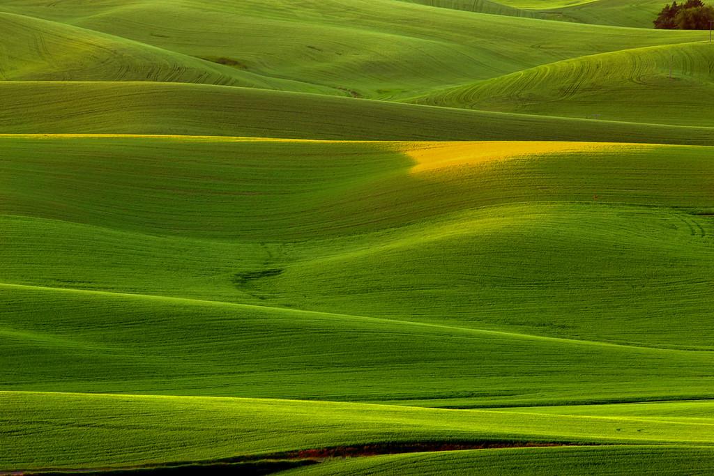 Washington State, Palouse Area,  Kamiak Butte, Sunset,  华盛顿州,  田园,  日落
