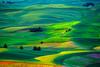 Washington State, Palouse Region, Steptoe Butte State Park, Sunrise, 华盛顿州,  田园,  日出
