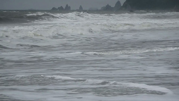 Surf at Rialto Beach