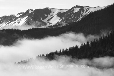 Morning clouds on the drive up to Hurricane Ridge.