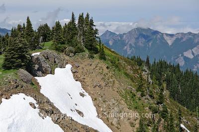 Vistas at the end of the Hurricane Ridge Trail.