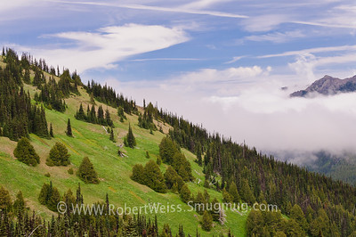 Afternoon clouds over the Hurricane Ridge Trail, Olympic National Park, Washington.