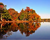 Fall Colors<br /> Pohick Bay, Virginia<br /> 156-panorama2
