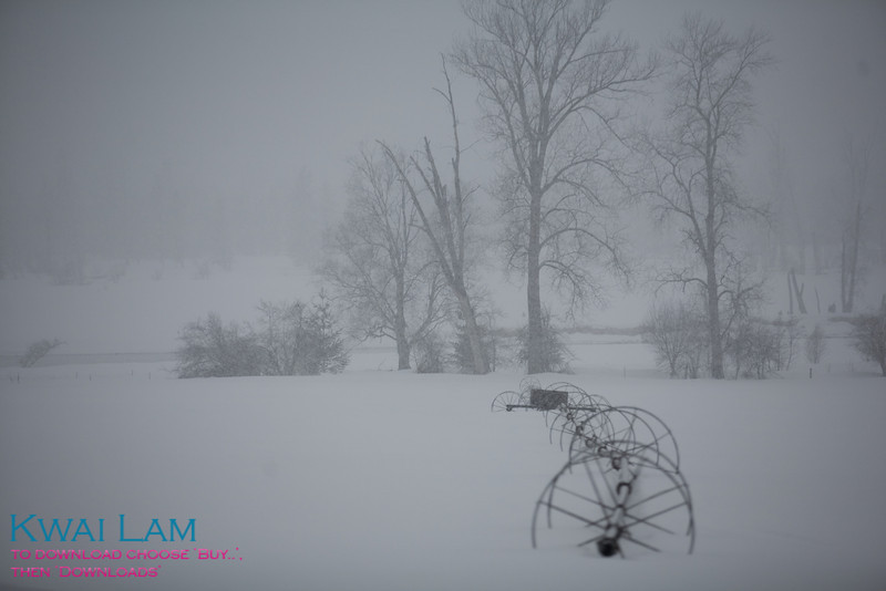 Self Propelled Irrigation in Snow