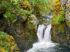 Little Qualicum Falls,<br /> Little Qualicum Falls Provincial Park, Vancouver Island, British Columbia