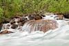 Paradise Creek Rapids, <br /> Banff National Park, Alberta, Canada
