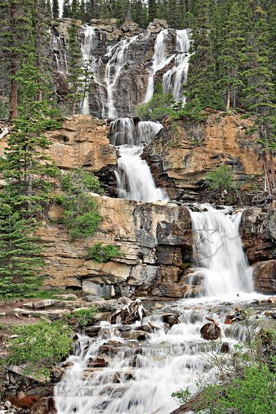Tangle Creek Falls,<br /> Icefields Parkway,<br /> Jasper National Park, Alberta, Canada