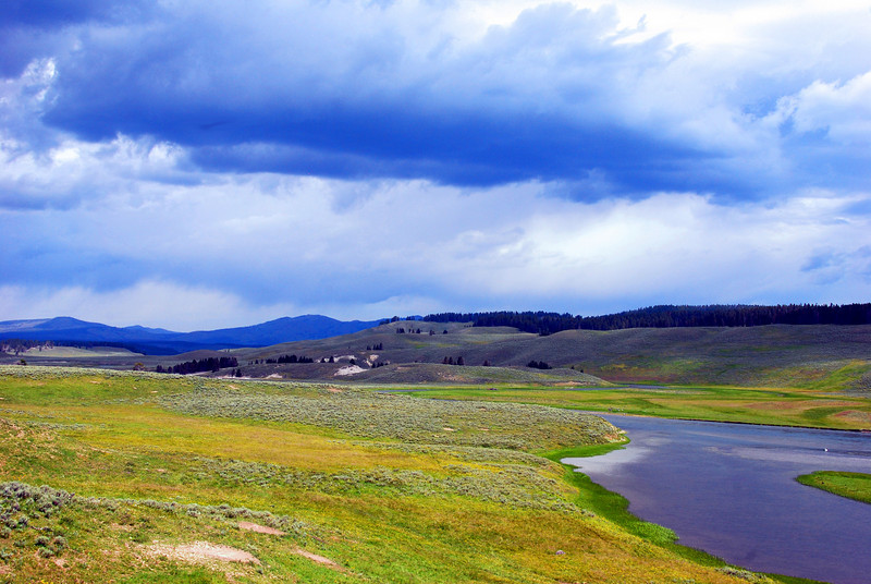 Hayden Valley, Yellowstone National Park