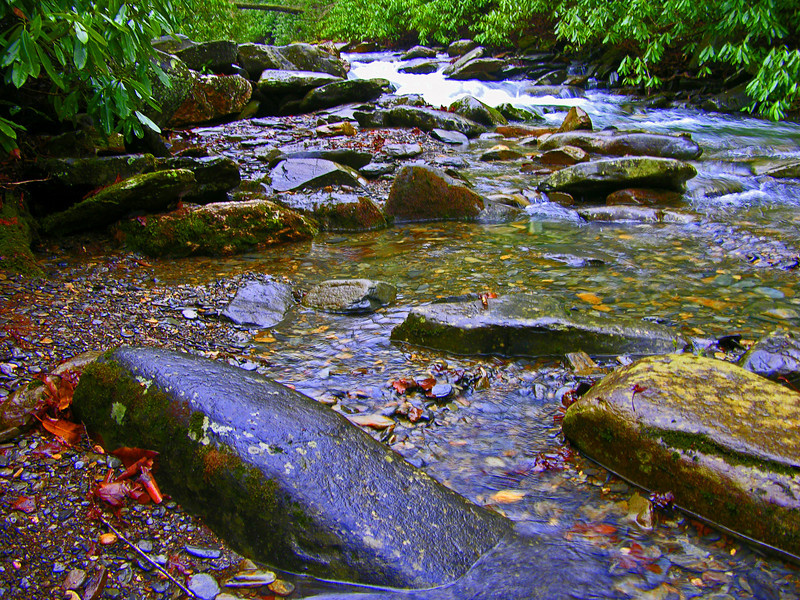 Babbling Creek, Smokey Mountain National Park