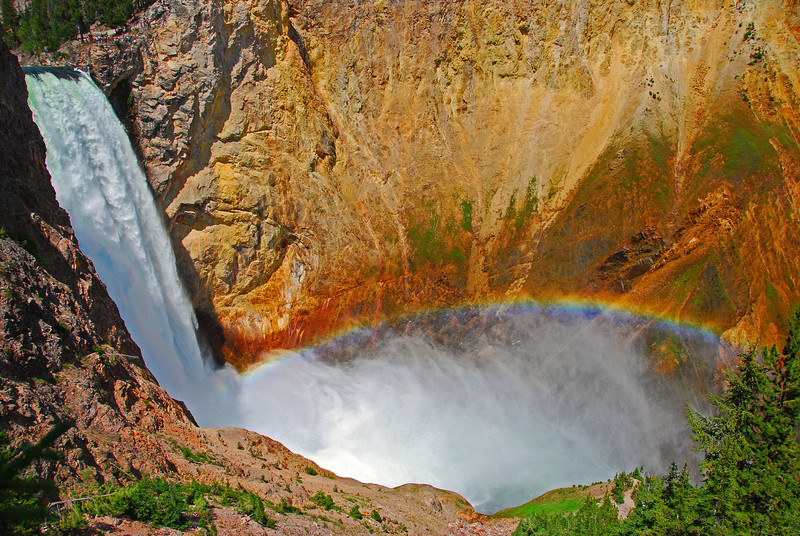 Lower Falls; Yellowstone National  Park