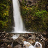 Dawson's Falls, Egmont/Taranaki National Park.<br /> North Island, New Zealand