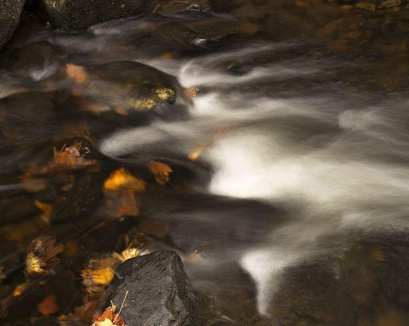 Capturefile: K:\My Pictures\Canon 10D\TRIPPER\Vermont Fall 2004\TRIP0001\041022.001\DCIM\215CANON\CRW_1579.CRW<br /> CaptureSN: 220103652-2151579.444070<br /> Software: C1 LE for Windows