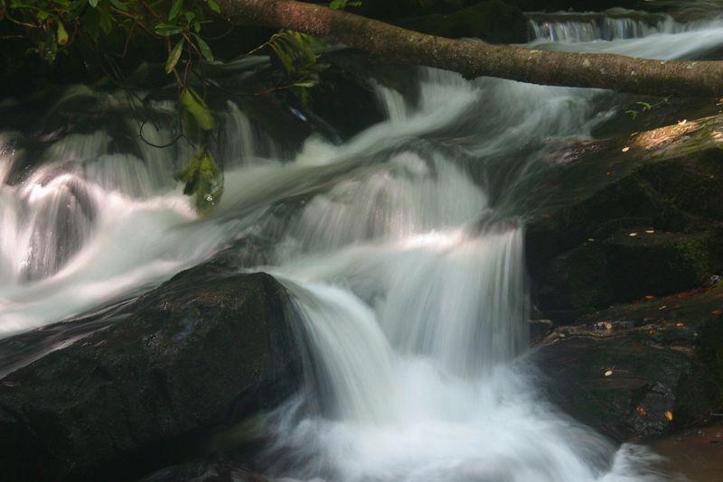 Wildcat Creek, above Lake Burton