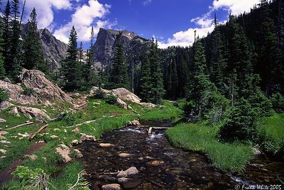 Stream near Bear Lake, Rocky Mountain NP