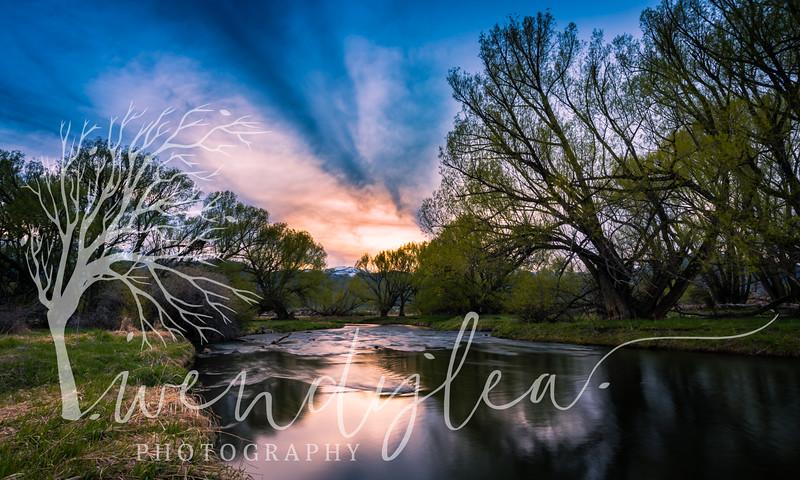 wlc Provo River 04221751April 22, 2017-Edit