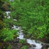 Wahkeena Falls<br /> Columbia River Gorge<br /> Oregon
