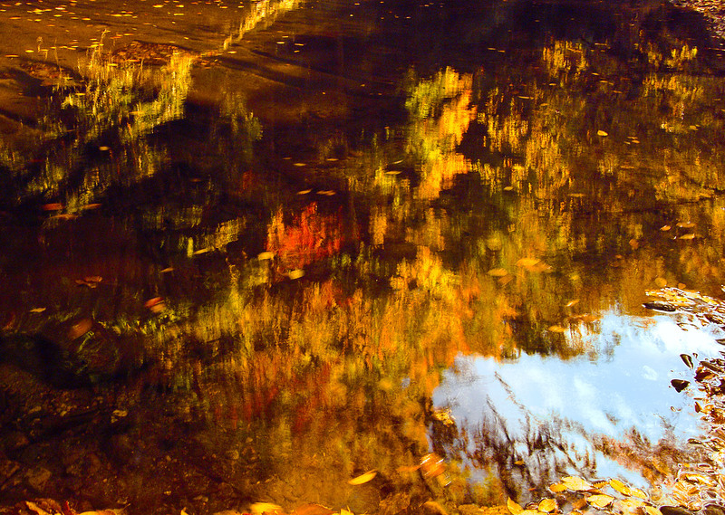 Fall Reflections-2