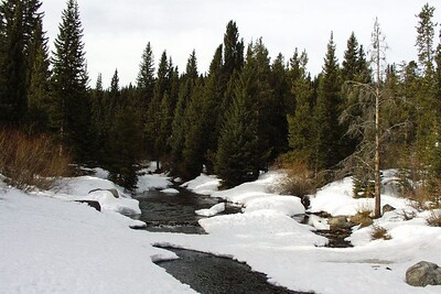 This is a creek behind my hotel in Breckinridge, CO.  After a training seminar in Denver in March, 2003, I took a few days extra to head to the Rockies.